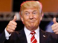 TRUMP GAGNE LES ELECTIONS US A MI-MANDAT (L'Imprécateur)