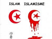 POURQUOI JE N'AIME PAS L'ISLAM ? (Anonyme)