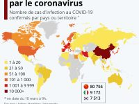 CORONAVIRUS : OU TROUVER LA BONNE INFORMATION ? (L'Imprécateur)