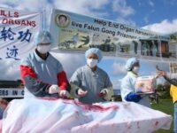 ONU : SOMMET MONDIAL POUR L'ABOLITION DU PRÉLÈVEMENT FORCÉ D'ORGANES (L'Imprécateur)
